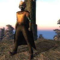 Sethiel's Outfit